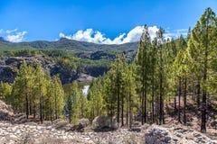 Góra krajobraz z jeziorem, zielonymi wzgórzami i bielem, chmurnieje świrony obrazy royalty free