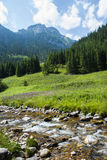 Góra krajobraz z rzeką Zdjęcie Stock