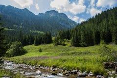 Góra krajobraz z rzeką Fotografia Royalty Free