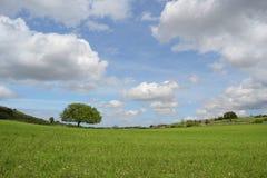 Góra krajobraz ziemia - panorama - Zielona planeta - Obrazy Royalty Free