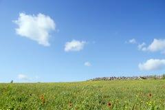 Góra krajobraz ziemia - panorama - Zielona planeta - Obraz Royalty Free