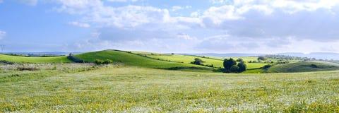 Góra krajobraz ziemia - panorama - Zielona planeta - Fotografia Stock