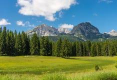 Góra krajobrazowy Bobotov Kuk Obrazy Stock