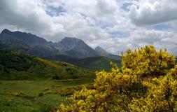 Góra Krajobrazowy Picos De Europa Obraz Stock