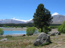 góra kucbarska nowe Zelandii Zdjęcia Stock