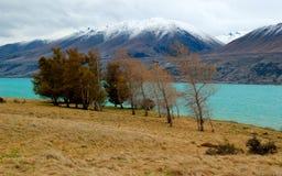 Góra Kucbarski Nowa Zelandia Zdjęcie Stock