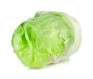 góra lodowa zielona sałata Obraz Stock