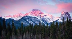 Góra Lougheed w Kananaskis, Alberta, przy wschodem słońca Zdjęcia Stock