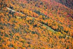 Góra Mansfield Fotografia Stock