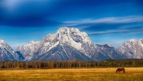 Góra Moran w Uroczystym Teton parku narodowym Zdjęcie Stock