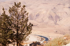 Góra Nebo, Jordania, Środkowy Wschód Obrazy Stock