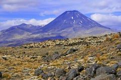 Góra Ngauruhoe, Północna wyspa, Nowa Zelandia Fotografia Stock