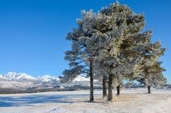 Góra śnieg Obraz Royalty Free