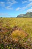 Góra norweski krajobraz Zdjęcie Royalty Free