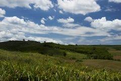 Góra plantacja Obrazy Stock