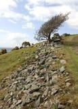 góra popiołu Zdjęcie Royalty Free