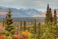 góra przeglądać wrangell zanetti Zdjęcie Stock