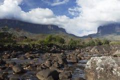 Góra Roraima Tepui i Kukenan zdjęcie royalty free