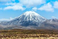 Góra Ruapehu i Tama jeziora krajobrazu Tongariro park narodowy, N Zdjęcia Stock