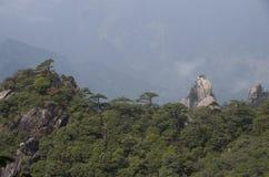 Góra Sanqing, Sanqingshan, Jiangxi Chiny Zdjęcia Royalty Free