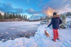 Góra Shuksan i Obrazek jezioro w Piekarnianym pustkowiu obrazy stock