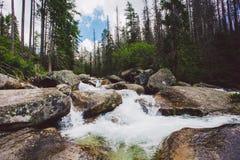 Góra, szczyt, wysoki Tatras, lato, Sistani Zdjęcie Stock