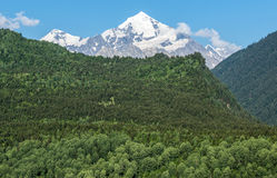 Góra Tetnuldi w Gruzja Obraz Stock