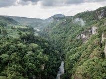 Góra, tropikalny las deszczowy i rzeka, Fotografia Royalty Free