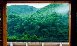 Góra w deszczu Zdjęcia Stock