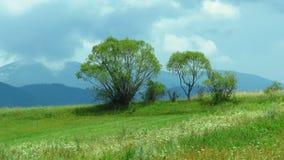 Góra widok Widok góra krajobraz obraz royalty free