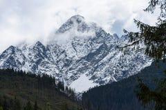 góra wierzchołki w jesieni zakrywającej w mgle lub chmurach Obrazy Stock
