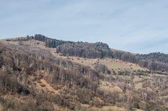 Góra wierzchołka krajobraz fotografia stock