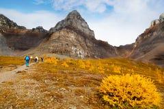 Góra Wycieczkuje w Kanadyjskich Skalistych górach zdjęcia stock