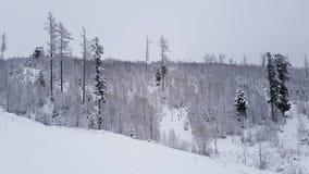 Góra z śniegiem zdjęcie royalty free