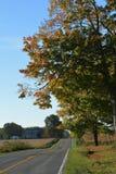 Górkowata wiejska droga Zdjęcia Royalty Free