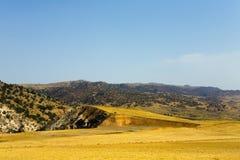 Górkowaty krajobraz w Turcja na letnim dniu Fotografia Stock