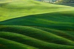 górkowaty krajobrazowy Tuscany Fotografia Royalty Free
