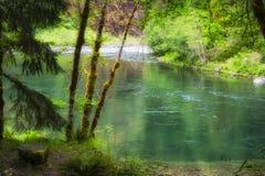 Górna Clackamas rzeka W Mt Kapiszonu las państwowy Obrazy Royalty Free