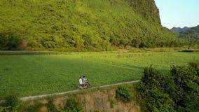 Górni widoków ludzie jadą hulajnogę wzdłuż pola przeciw górze zdjęcie wideo