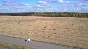 Górni widoku samochodu stojaki na drodze między polami i dziewczyna spacerami zbiory wideo