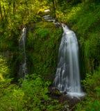 Górny McChord Spada Kolumbia rzeki wąwóz Obrazy Royalty Free
