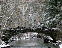 Górny Robert Treman stanu parka most w zimie zdjęcia royalty free