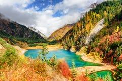Górny Sezonowy jezioro z lazur wodą wśród spadków drewien fotografia stock