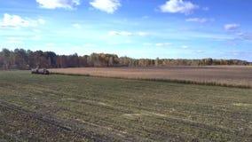 Górny widoku żniwiarz nalewa kukurydzanego ulistnienie w przyczepę zbiory wideo
