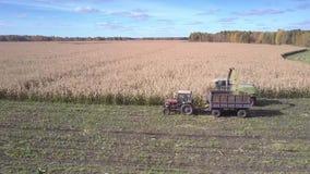 Górny widoku ciągnik z przyczepą zbiera zbierającą kukurudzy masę zbiory