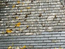 Górska chata łupkowego dachu szczegół z naprawą fotografia royalty free