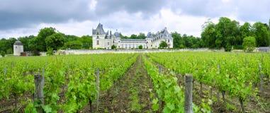 Górska chata De Breze, Loire dolina, Francja Zdjęcia Stock