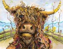 Górska krowa z kędzierzawego włosy sztuką obraz stock