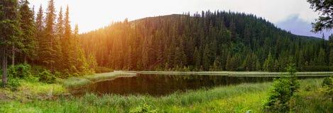 Górski jezioro w Karpackich górach Ukraina obrazy royalty free