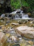 górski strumień Zdjęcie Stock